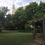 alamo-courtyard